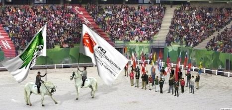 Record battu pour les Jeux Equestres Mondiaux - la Manche Libre   JEM 2014 Normandie   Scoop.it