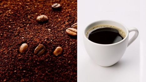 Your ground coffee may contain soybeans, corn--even twigs - Fox News | Cigars & Coffee | Scoop.it