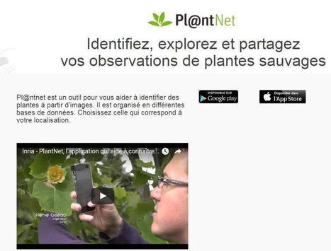 Identifier les plantes en les prenant en photo | Ecolo-Geek | Scoop.it