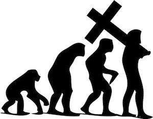 The Great Beyond: Biology teachers often dismiss evolution | bioinformatics | Scoop.it