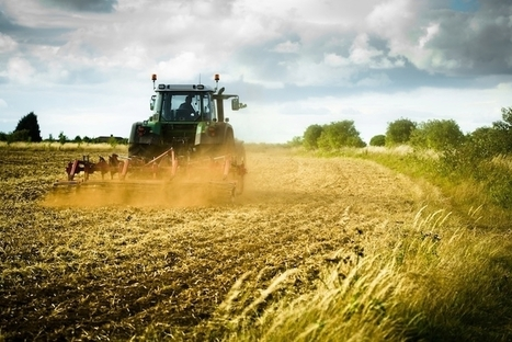 Agri-food industry: 2015 as a record year for Italy | Web rank | Scoop.it