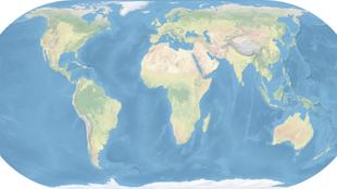 La mappa della vita nel web | Med News | Scoop.it