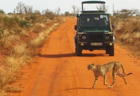 Viaggi 4x4 alla scoperta di luoghi sconosciuti ed inesplorati. | ViaggiSudAfrica | Scoop.it