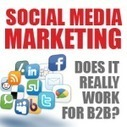 Social media marketing: does it really work for B2B? | Internet marketing and social media with WSI | Scoop.it