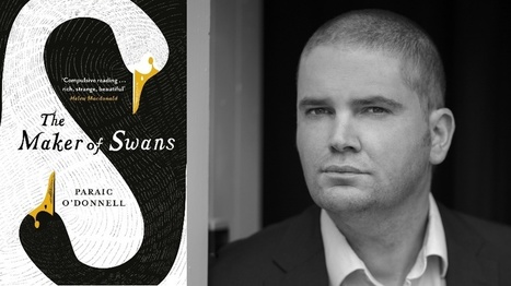 There are no rules: debut author Paraic O'Donnell's advice to aspiring authors | The Irish Literary Times | Scoop.it