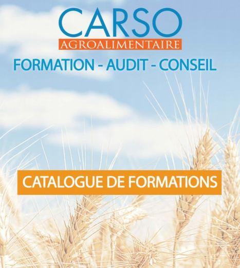 Formation : CARSO lance une nouvelle offre en agroalimentaire | Les ETI de la Métropole de Lyon | Scoop.it
