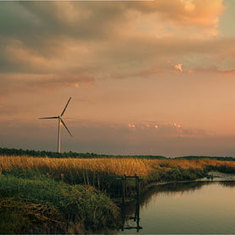 Less Is More When Restoring Wetlands: Scientific American | Sustain Our Earth | Scoop.it