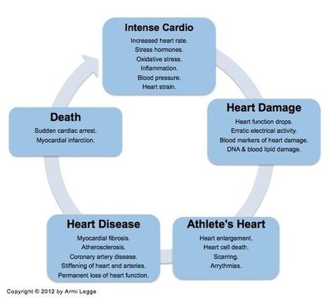 Does Cardio Cause Heart Disease? | Peak Performance News | Scoop.it