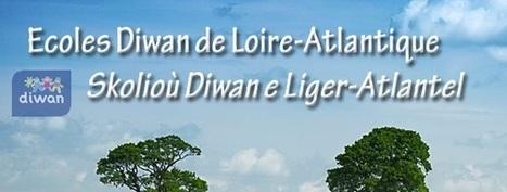 Nantes. D'anciens salariés dénoncent les méthodes de l'AEP Diwan Naoned | Bretagne, le breton,etc... | Scoop.it