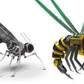 5 Ways Cyborg Insects Could Change The World | Amazing Science | Scoop.it