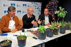 La flora autóctona se muestra - Canarias 7 | BIOMAS | Scoop.it