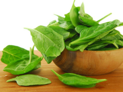 Top 8 Foods for Healthy Hair | Natural Hair Care | Scoop.it