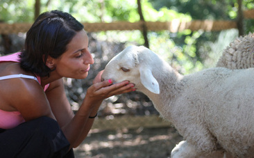 How to Stay Kind When Standing Up For Animals | Animal Cruelty | Scoop.it