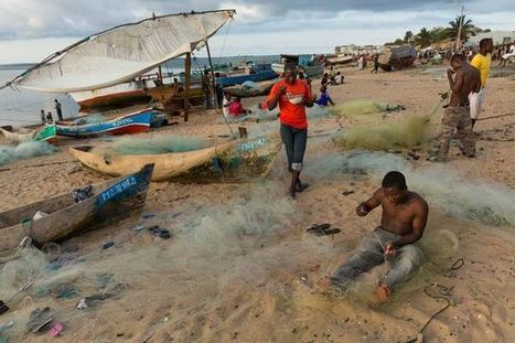 An Appreciation of the Magical Waters of Mozambique | ENVIRONMENTAL FINDINGS THAT MIGHT AMAZE YOU | Scoop.it