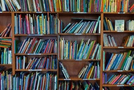 Les bibliothèques vont-elles survivre? | Docdoc | Scoop.it