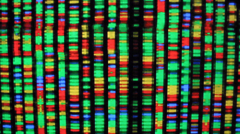 DNA's Hidden Layer Is Real, and Physicists Are Finding More Proof   DigitAG& journal   Scoop.it