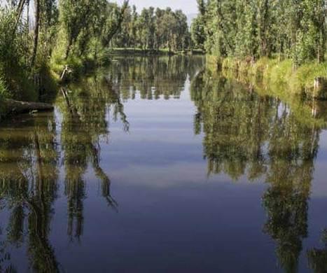 México. Una técnica de cultivo prehispánica sin pesticidas llega almercado. | Geografía | Scoop.it