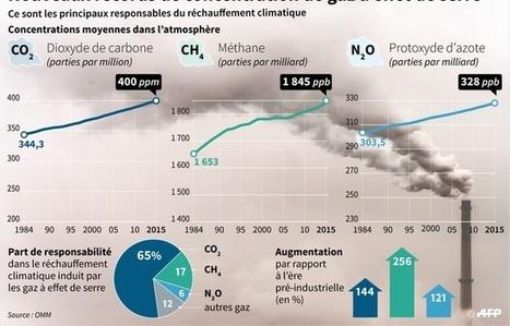 Pollution : L'air n'a jamais été aussi pollué qu'en 2015 par le dioxyde de carbone | Toxique, soyons vigilant ! | Scoop.it