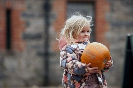 What to do: Spooky fun for kids at Squires Garden Centre - getwestlondon | My Child Learns UK | Scoop.it