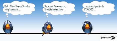 Les birds aiment la NSA | Alphabétisation : Lire en caravane | Scoop.it