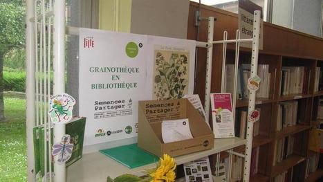 La Bibliothèque municipale de Lille installe une grainothèque - La Voix du Nord | Insolite bibliothèque | Scoop.it