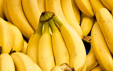 Bananas: Are They Fattening or Will They Help You Lose Weight? | zestful living | Scoop.it