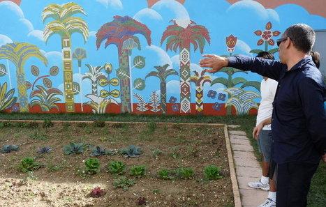 Marseille : les détenus cultivent leur jardin | Prison: La réhabilitation par l'Education et la Culture | Scoop.it