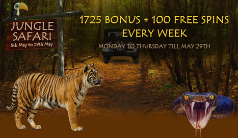 JUNGLE SAFARI WEEKLY OFFERS | Lotus Group of Online Casinos | Scoop.it