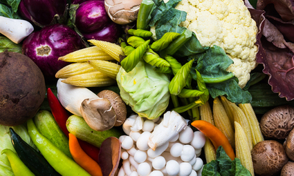 New, Improved Vegetarian and Vegan Food Pyramid | EcoWatch | Sustain Our Earth | Scoop.it