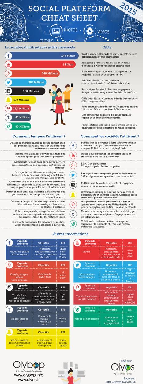 Infographie : Cartographie des réseaux sociaux | MyEcopage | Scoop.it