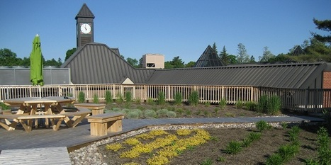 Green roofs sprout on local schools and condos | Sustainable Urban Agriculture | Scoop.it