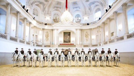 Welcome to The Spanish Riding School of Vienna Live Tours | Gifts | Scoop.it