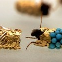 Artist Hubert Duprat Uses Insects To Weave Little Gold And Jewel Houses | Creative Civilization | Scoop.it