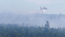 'Significant progress' made in battling Nova Scotia wildfires: province | Nova Scotia Hunting | Scoop.it