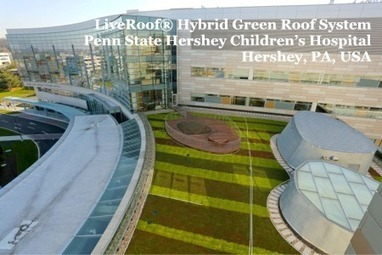 Green Roofs Offer Natural Views and Access to Green Space for Patients and ... - Greenroofs.com | Vertical Farm - Food Factory | Scoop.it