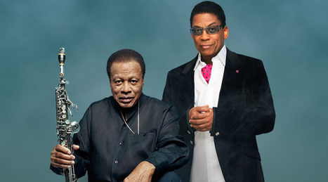Herbie Hancock And Wayne Shorter Share Open Letter To The Next Generation Of Artists | Segway | Scoop.it