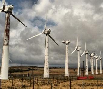 Professor Ian Plimer Slams the Great Wind Power Fraud | Economy | Scoop.it