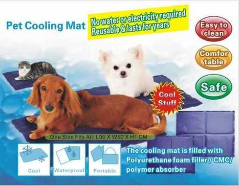 Buy online Dog Cooling Mat small large and extra large size   Dog cooling mats and dog cooling beds   Scoop.it