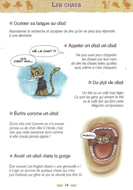 "Quelques expressions avec le mot ""chat"". 