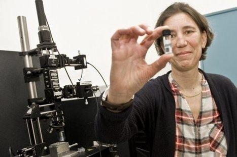 Toulouse. Chronique d'un succès mondial annoncé, les nanotags | La lettre de Toulouse | Scoop.it