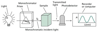 Plant Physiology Online: Principles of Spectrophotometry | Biomedical Electronics | Scoop.it