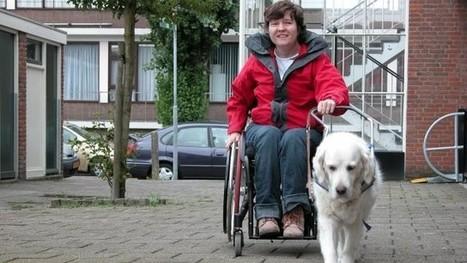 Site toont toegankelijkheid van Overijssel - RTV Oost   Rolstoel   Scoop.it