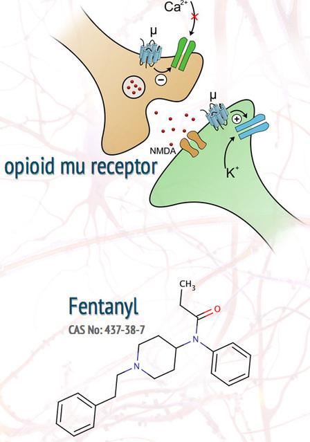 Fentanyl Shortage Creates a Painful Situation - LGM Pharma Blog | FDA Drug Shortage Crisis | Scoop.it