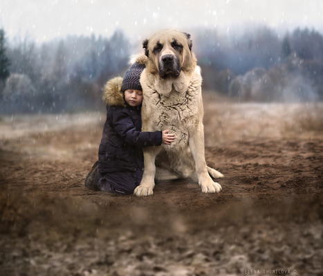 ..between winter & autumn.. by Elena Shumilova | I didn't know it was impossible.. and I did it :-) - No sabia que era imposible.. y lo hice :-) | Scoop.it
