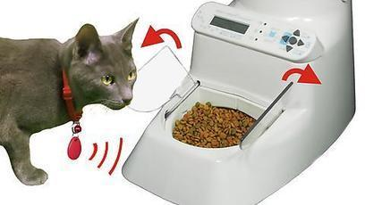 Wireless Whiskers automatic cat feeder | robinjoen | Scoop.it