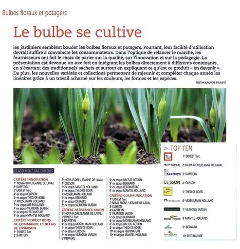 LE BULBE SE CULTIVE - JARDINERIES - 21 JUIN 2016 | Revue de presse Nova-Flore | Scoop.it