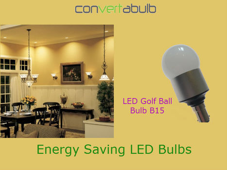 Swap the Incandescents and Buy LED Bulbs   Convertabulb   Scoop.it