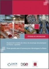 Analyse de la chaîne de valeur du recyclage des plastiques en France – ADEME | Institut de Recherche Dupuy de Lôme - CNRS FRE 3744 | Scoop.it