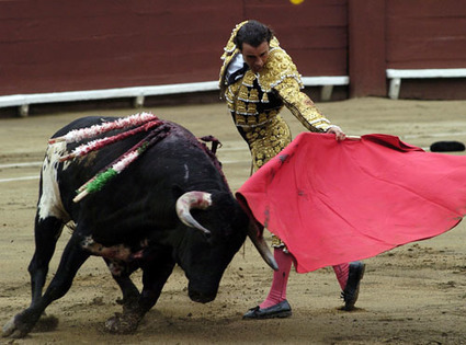 Issues & Controversies - Article: Bullfighting   English 10 Research Topics   Scoop.it