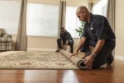 Professional rug cleaners Chicago   Various   Scoop.it